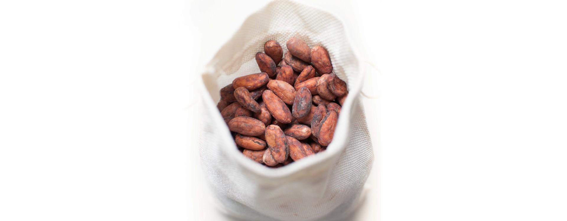 Kvalita kakaových bobů