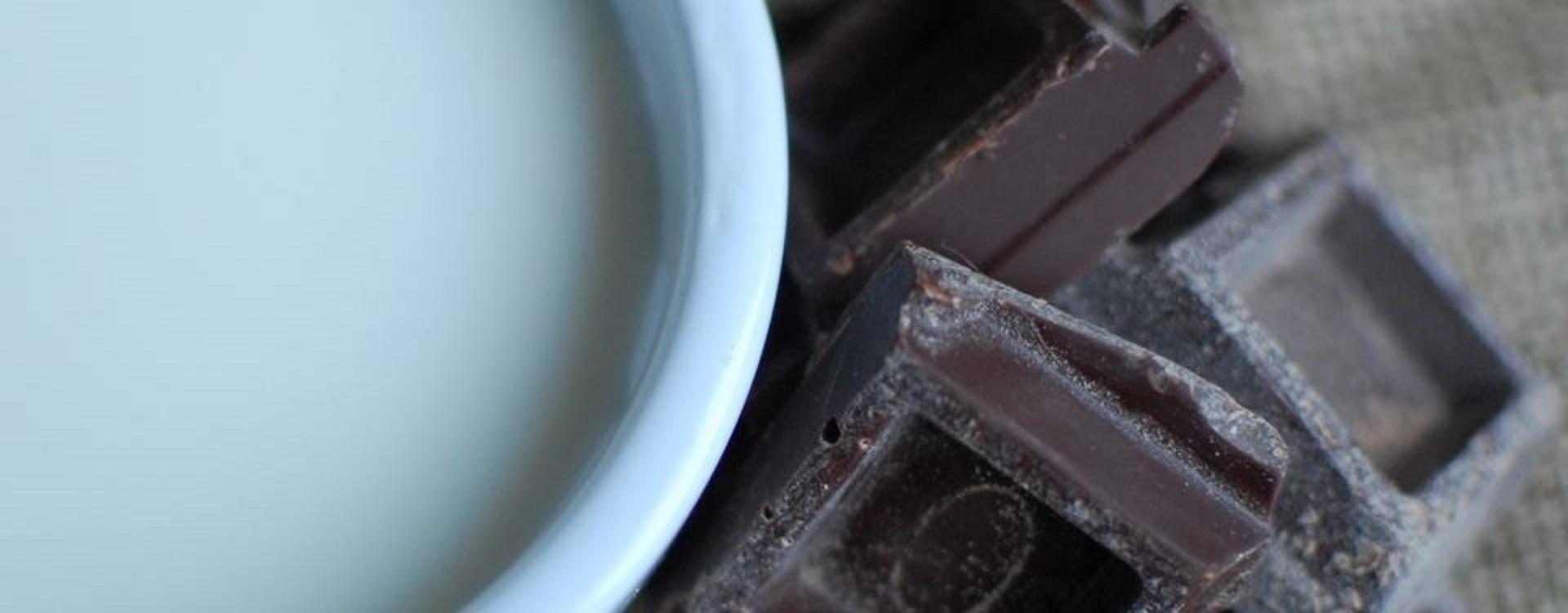 Je čokoláda Veg / Vegan / RAW ?