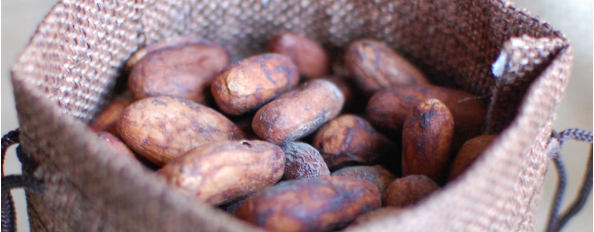 Kolik stojí kakao ?